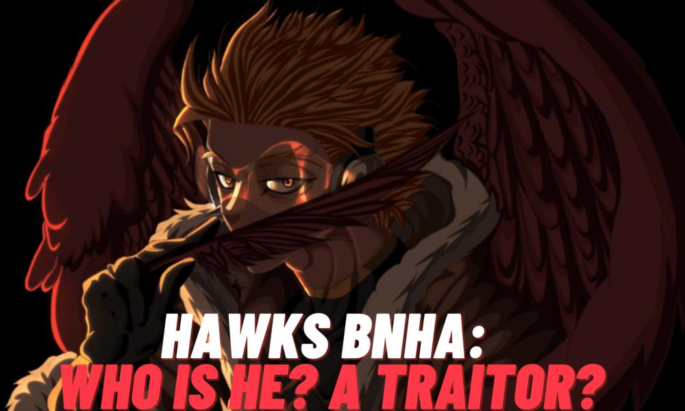 hawks bnha